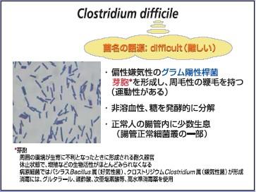 difficile今回は、院内感染菌としての重要性が認識されつつあるClostridium di